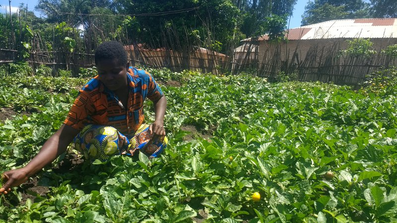 A Beninese man plants crops in the sunny outdoors