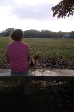 Volunteer with chicken