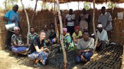Ashley and Malawian counterparts huddle around rows of plant seedlings in their tree nursery