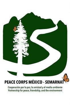 XV Anniversary Logo PCM