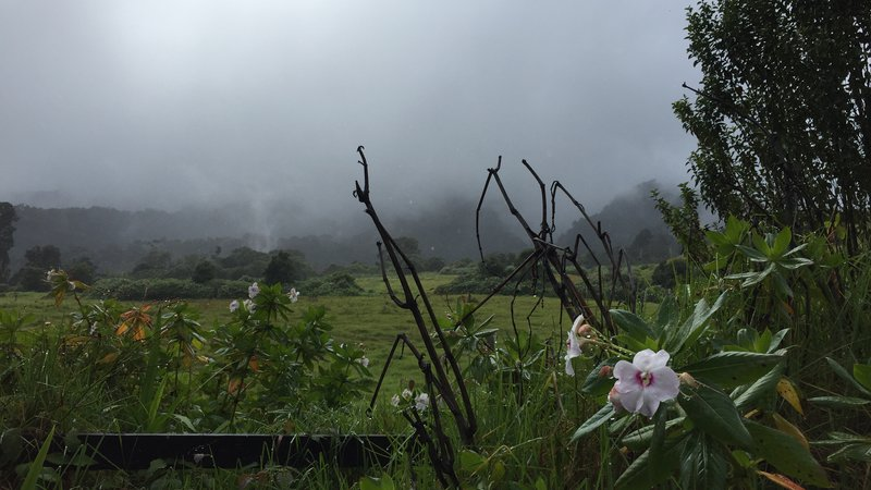Chiriqui highlands of Panama.