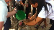 Cambodia water project