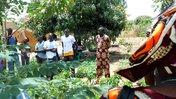 Master farmers in Senegal