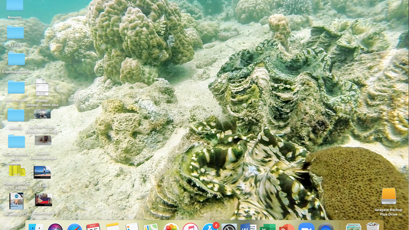 A screenshot of a computer screen, the background is a giant clam in the ocean