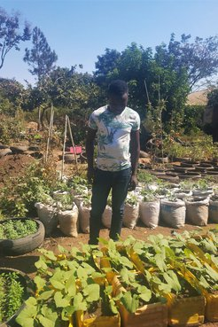 A Malawian man stands in front of rows of his garden