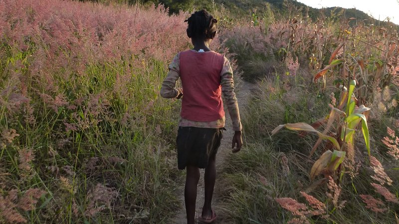commute zambia
