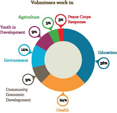 Community health peace corps essay
