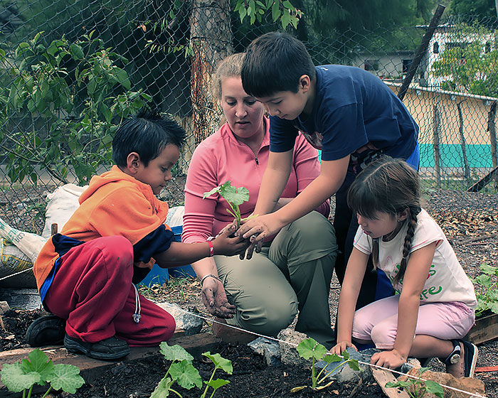 Second Place - Arpan Dasgupta - Seeds of a Greener School