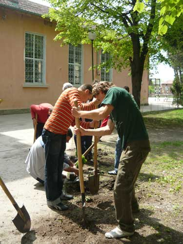 Park beautification project in Bulgaria