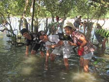 Filipino youth plant 12,000 mangroves in Cebu, Philippines.