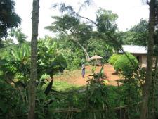 Peace Corps volunteer Sally Kintner's community.