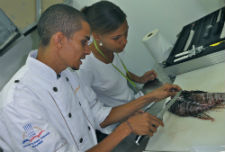 Bergmann's students learn how to cook lionfish during a culinary class in the Dominican Republic.