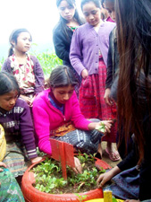 Girls pick radishes that they planted in gardens made of recycled car and truck tires.