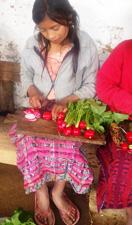 A girl in Keisha Herberts group cuts radishes they grew.