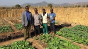 Malawian farmers stand proudly in front of their food garden crops