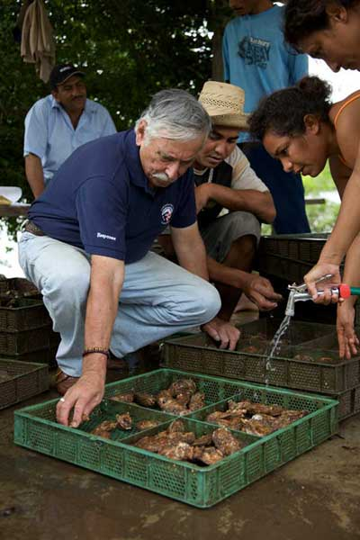 Response Volunteer Bob Arias works to establish a local front to harvest and market oysters in Panama