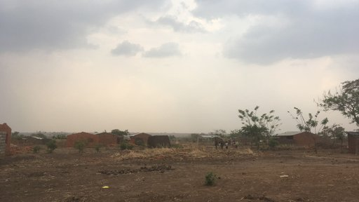 The dusty, dry, dead landscape of a Malawian village that has not seen rain in many months.