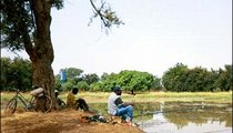 Men fish in a bog near a reservoir.