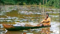 DOKO Antoine rows a pirogue in a dammed lake built by Ndomongo Jean and Peace Corps Volunteers. He is pulling weeds from the center of the lake to encourage plankton growth, essential to tilapia farming. These hand-made canoes are carved from the trunks of tropical hardwoods and are a principal form of water transport.
