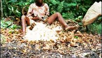 Tatiana, 16, peels the tough skin off cassava tubers before placing the tubers in a burlap bag in the pond. Each family has a manmade pond where tubers are soaked for three days to soften them. They are then pounded into batons of manioc.