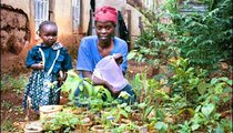 In an effort to save indigenous tree species, Mama Mary Senelwa (shown with her daughter, Rispa Minayo) has started a tree nursery. Every day the seedlings must be watered and kept under shade to protect them from drying up in the scorching midday sun.