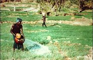 Mali_water in Africa2