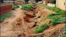 Heavy rains in the rainy season and the lack of vegetation lead to serious erosion problems. Continued erosion carries away important topsoil, making plant and crop growth almost impossible.