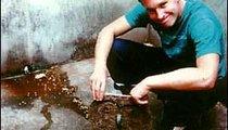 I'm posing in a common Malian pit latrine.