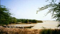 These small boats on the Senegal River are water taxis.