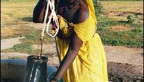 Malima Mint Zaka uses delous (containers made from old inner tubes of tires) to pull water up from the well.