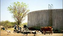 The water at this well attracts a lot of animals as well as people, so it becomes contaminated and dangerous for the humans who use it.