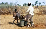 Niger_water in Africa3