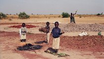 Chapter 10: The Chadian Family